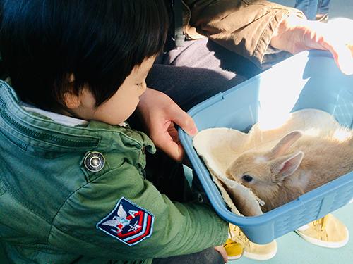 ウサギを抱っこしてるところ